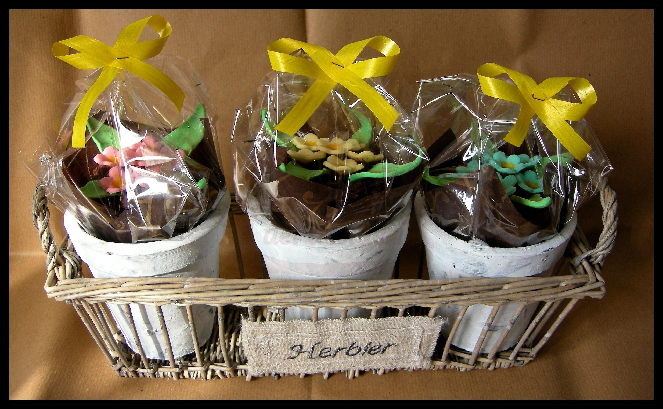 "Cupcake ""Vasetti fioriti"""