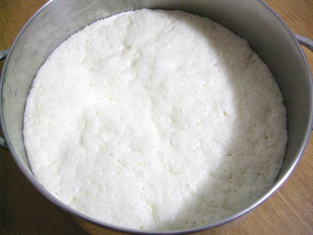 DSCN2045Pizza e focaccia gluten free: impasto lievitato